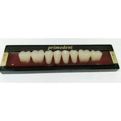 Зубы Primodent Цвет D2 жеват. гр. размер T3 (низ)
