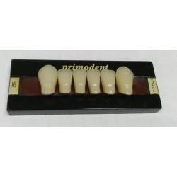 Зубы Primodent Цвет B2 фронт. гр. размер I4 (низ)