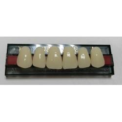 Зубы NEW ACE Naperce Цвет A1 фронт. гр. размер T6 (верх)
