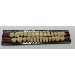 Зубы NEW ACE & Naperce Цвет A2 фронт. гр. размер T4 (полный гарнитур)