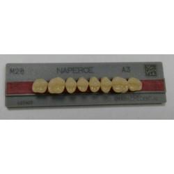Зубы Naperce Цвет A3 жавет. гр. размер М28 (верх)