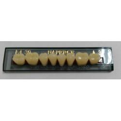 Зубы Naperce Цвет A3 жавет. гр. размер М30 (низ)