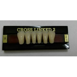 Зубы CROSS LINKED 2 Цвет A1 фронт. гр. размер I4 (низ)