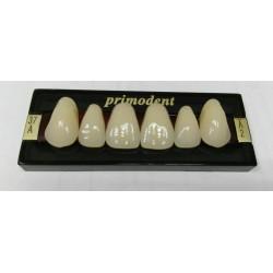 Зубы Primodent Цвет A2 фронт. размер 37 (верх)